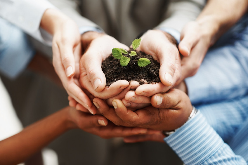 Business Partnerships are critical to success