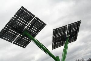Huntington Solar Trees