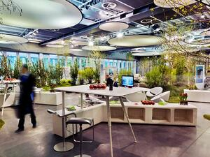 Bringing nature back to the office can help productivity